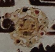 تصویر ش 6: علامت تعشیر در کالای ش 491 در حراج بنهامز، 12 آوریل 2000 میلادی (لندن)
